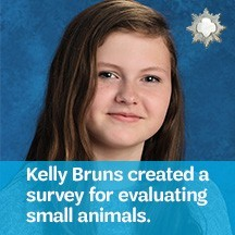 2018-Silver-Award-Kelly-Bruns-Small Animal-Survey-for-Foster-Families
